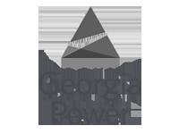 new georgia power logo